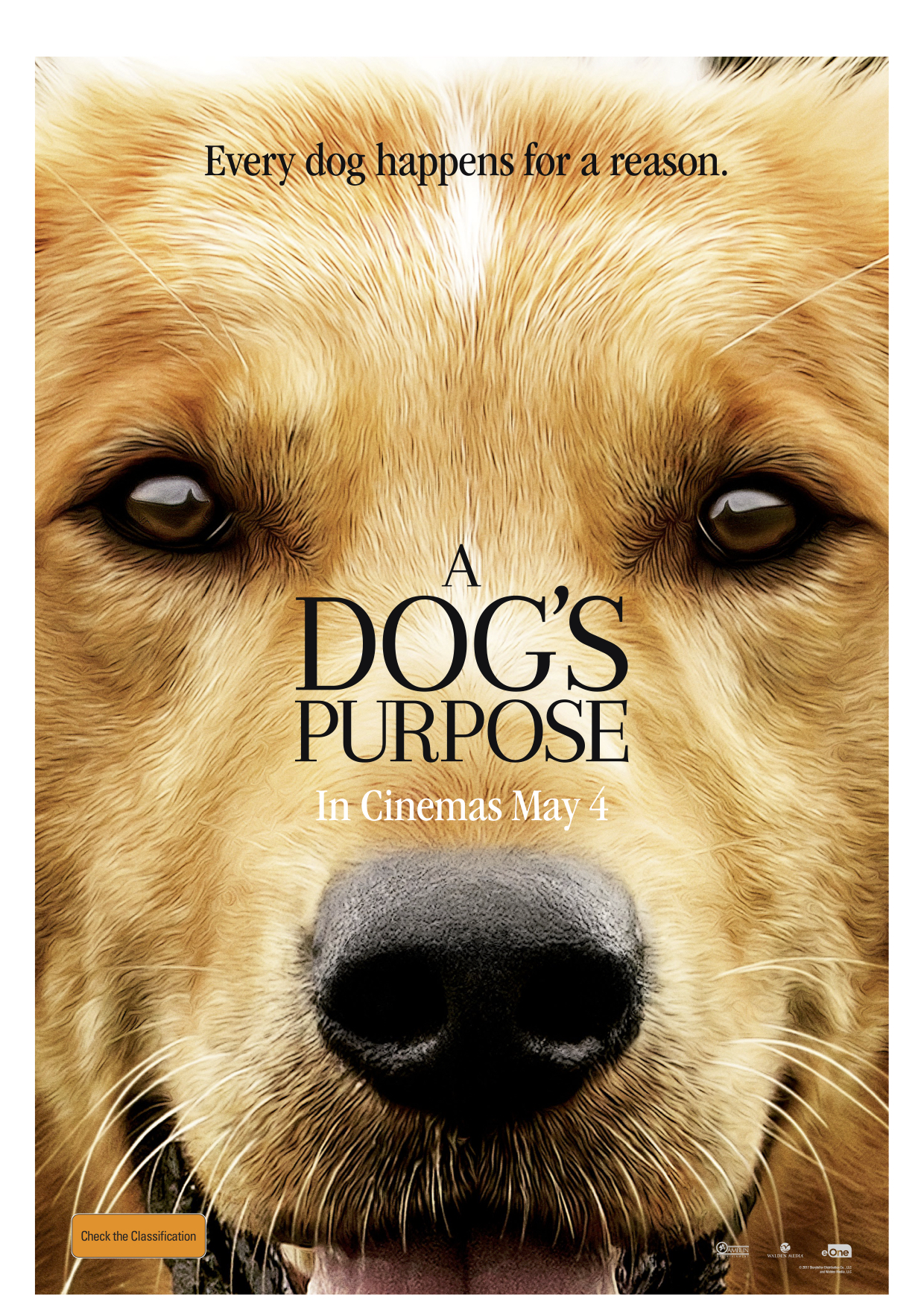 A Dog S Purpose Free Movie Online Movies